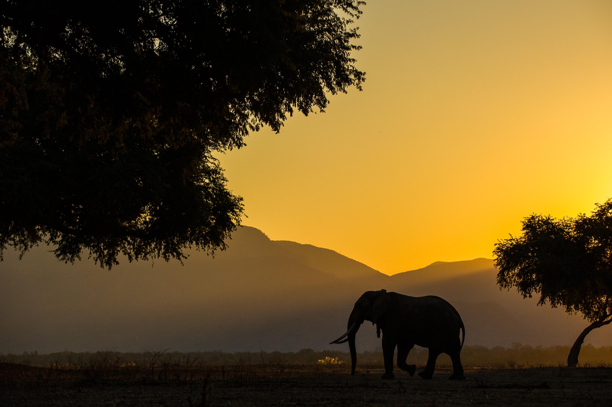 2014-07-20 Zimbabwe-6710-Edit